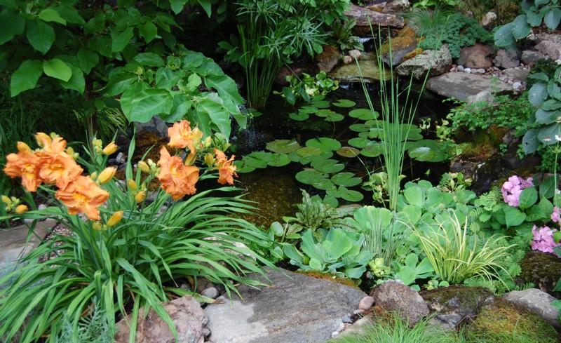 Afishandflowers 294