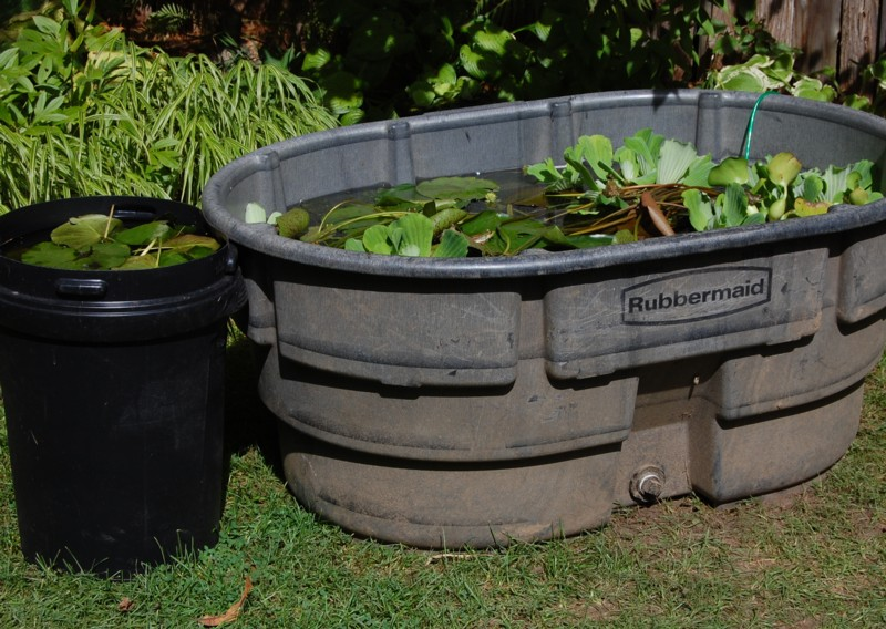 earlysept10 074 - Rubbermaid Tubs